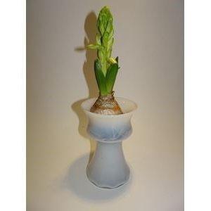Hyacintglas i opalglas Holmegaard